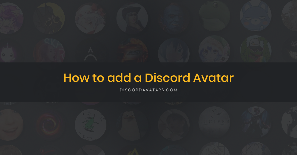 How to add a Discord avatar